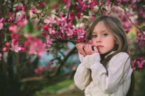 Springflowerportraits