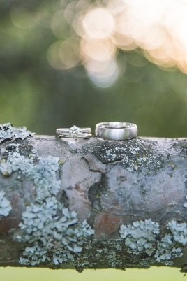 Photography Rings